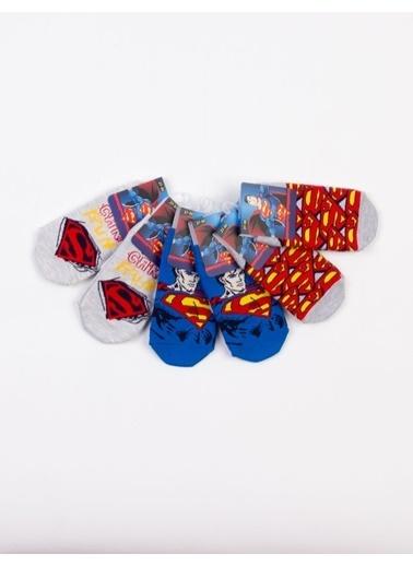 Superman  Lisanslı 6 Çift Patik Çocuk Çorap 18200 Kırmızı
